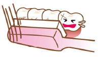 足立区綾瀬の歯医者 新井歯科医院 マイ歯ブラシの選び方